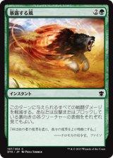 暴露する風/Revealing Wind 【日本語版】 [DTK-緑C]