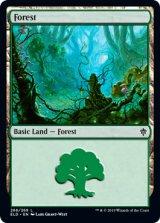 森/Forest No.266 【英語版】 [ELD-土地C]