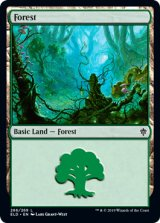 森/Forest No.266 【英語版】 [ELD-土地C]《状態:NM》