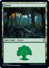 森/Forest No.267 【英語版】 [ELD-土地C]《状態:NM》