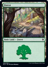 森/Forest No.268 【英語版】 [ELD-土地C]
