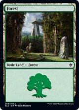 森/Forest No.269 【英語版】 [ELD-土地C]《状態:NM》