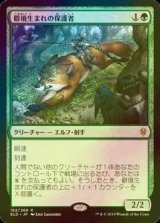 [FOIL] 僻境生まれの保護者/Wildborn Preserver 【日本語版】 [ELD-緑R]《状態:NM》