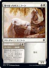 独りぼっちのユニコーン/Lonesome Unicorn 【日本語版】 [ELD-白C]《状態:NM》