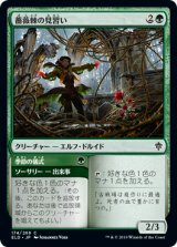薔薇棘の見習い/Rosethorn Acolyte 【日本語版】 [ELD-緑C]《状態:NM》