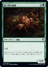 胞子頭の蜘蛛/Sporecap Spider 【日本語版】 [ELD-緑C]