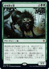 【予約】意地悪な狼/Wicked Wolf 【日本語版】 [ELD-緑R]