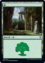 森/Forest No.269 【日本語版】 [ELD-土地C]《状態:NM》