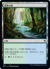 茨森の滝/Thornwood Falls 【日本語版】 [ELD-土地C]