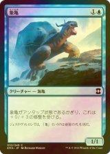 [FOIL] 象亀/Giant Tortoise 【日本語版】 [EMA-青C]
