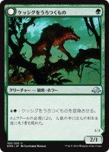 ケッシグをうろつくもの/Kessig Prowler 【日本語版】[EMN-緑U]《状態:NM》