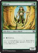 葉光らせ/Leaf Gilder 【日本語版】 [EVI-緑C]