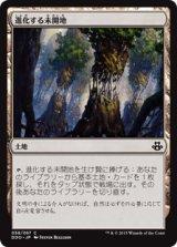 進化する未開地/Evolving Wilds 【日本語版】 [EVK-土地C]《状態:NM》