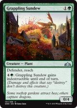 絡み合うモウセンゴケ/Grappling Sundew 【英語版】  [GRN-緑U]