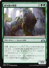 樹木園の精霊/Arboretum Elemental 【日本語版】  [GRN-緑U]