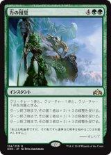 力の報奨/Bounty of Might 【日本語版】  [GRN-緑R]