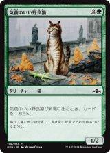 気前のいい野良猫/Generous Stray 【日本語版】  [GRN-緑C]