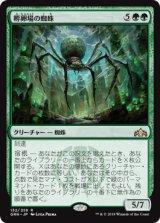 孵卵場の蜘蛛/Hatchery Spider 【日本語版】  [GRN-緑R]《状態:NM》