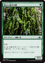 落とし格子の蔦/Portcullis Vine 【日本語版】  [GRN-緑C]