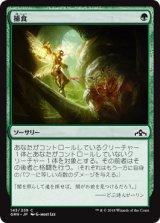 捕食/Prey Upon 【日本語版】  [GRN-緑C]