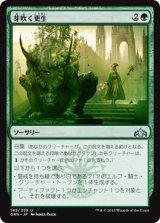 芽吹く更生/Sprouting Renewal 【日本語版】  [GRN-緑U]