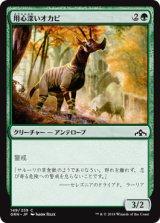 用心深いオカピ/Wary Okapi 【日本語版】 [GRN-緑C]