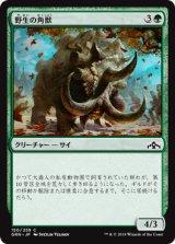 野生の角獣/Wild Ceratok 【日本語版】  [GRN-緑C]