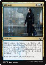 概念の雨/Notion Rain 【日本語版】  [GRN-金C]