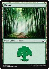Forest 【英語版】 [GS1-茶C]