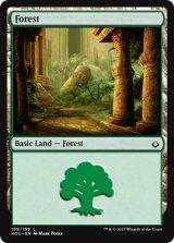 森/Forest No.199【英語版】[HOU-土地]
