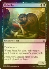 [FOIL] 廃墟ネズミ/Ruin Rat 【英語版】[HOU-黒C]