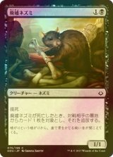 [FOIL] 廃墟ネズミ/Ruin Rat 【日本語版】[HOU-黒C]