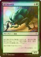 [FOIL] 採石場の甲虫/Quarry Beetle 【日本語版】[HOU-緑U]