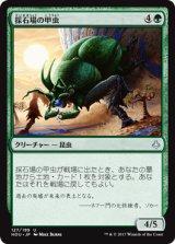 採石場の甲虫/Quarry Beetle 【日本語版】[HOU-緑U]