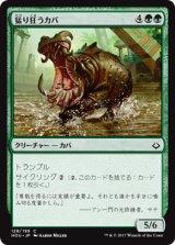 猛り狂うカバ/Rampaging Hippo 【日本語版】[HOU-緑C]