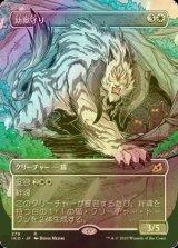 [FOIL] 幼獣守り/Cubwarden (ショーケース版) 【日本語版】 [IKO-白R]《状態:NM》