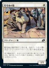 駐屯地の猫/Garrison Cat 【日本語版】 [IKO-白C]《状態:NM》