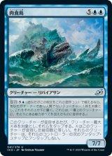 肉食島/Archipelagore 【日本語版】 [IKO-青U]《状態:NM》