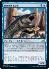 飛びかかる岸鮫/Pouncing Shoreshark 【日本語版】 [IKO-青U]《状態:NM》