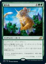 著大化/Colossification 【日本語版】 [IKO-緑R]《状態:NM》