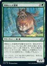 溌剌とした狼熊/Exuberant Wolfbear 【日本語版】 [IKO-緑U]《状態:NM》