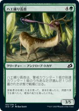 ハエ捕り長首/Flycatcher Giraffid 【日本語版】 [IKO-緑C]《状態:NM》