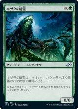 キヅタの精霊/Ivy Elemental 【日本語版】 [IKO-緑U]《状態:NM》
