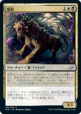 屍豹/Necropanther 【日本語版】 [IKO-金U]《状態:NM》