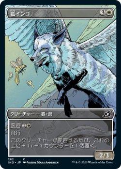 画像1: 狐インコ/Vulpikeet (ショーケース版) 【日本語版】 [IKO-白C]