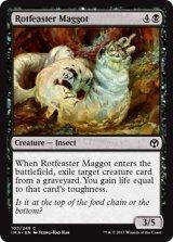 腐敗喰いの蛆/Rotfeaster Maggot 【英語版】 [IMA-黒C]