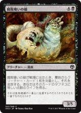 腐敗喰いの蛆/Rotfeaster Maggot 【日本語版】 [IMA-黒C]