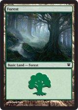 森/Forest No.263 【英語版】 [ISD-土地]《状態:NM》