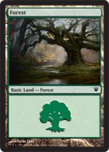 森/Forest No.264 【英語版】 [ISD-土地]