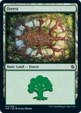 森/Forest No.72 【英語版】 [JMP-土地C]